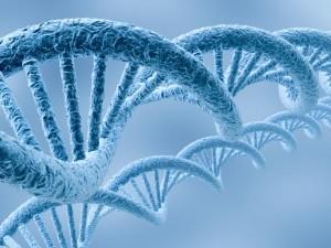 secuenciacion-genoma-humano